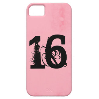 Sweet Sixteen Case For The iPhone 5