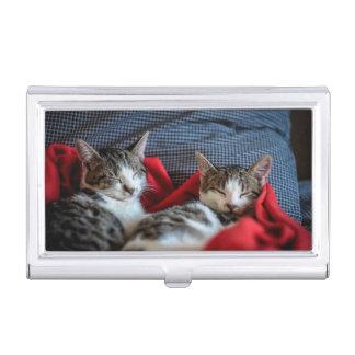 Sweet Sleeping Kitties Business Card Holder