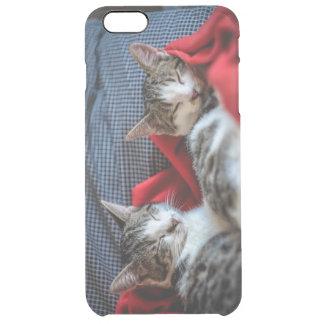 Sweet Sleeping Kitties Clear iPhone 6 Plus Case