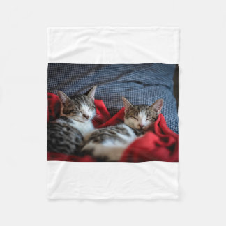 Sweet Sleeping Kitties Fleece Blanket