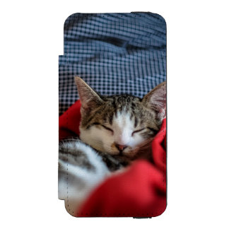 Sweet Sleeping Kitties Incipio Watson™ iPhone 5 Wallet Case