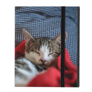 Sweet Sleeping Kitties iPad Case