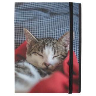 """Sweet Sleeping Kitties iPad Pro 12.9"""" Case"""