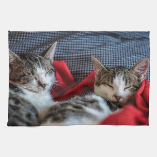 Sweet Sleeping Kitties Kitchen Towel