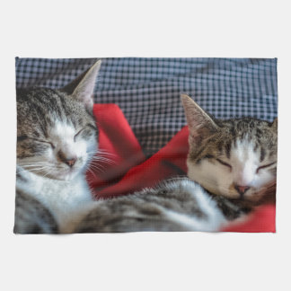 Sweet sleeping Kitties Kitchen Towel