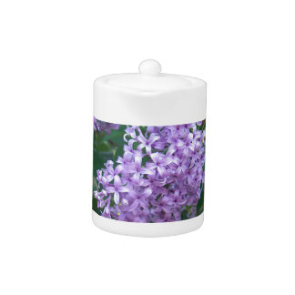 Sweet Smelling Lilacs