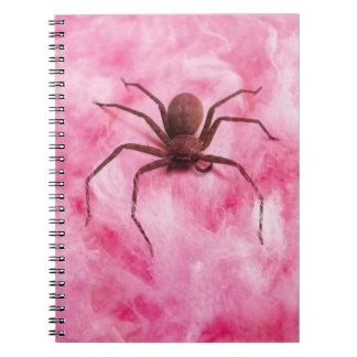 Sweet spider notebook