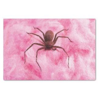 Sweet spider tissue paper