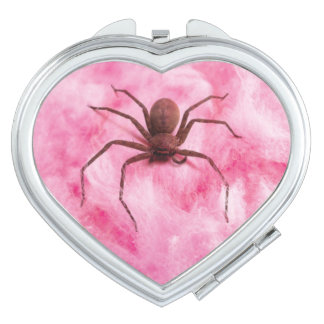 Sweet spider vanity mirror