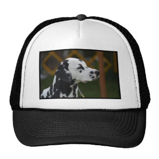 Sweet Spotted Dalmatian Mesh Hats