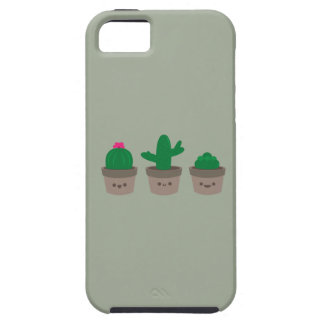Sweet Succulent iPhone 5 Covers