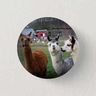 Sweet Suri Alpacas of Wonder 1 Inch Round Button