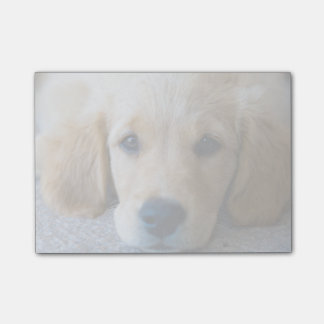 Sweet, Sweet Puppy Post-it Notes