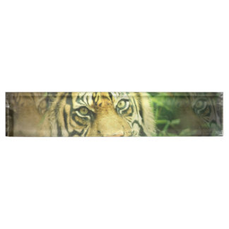 Sweet Tiger Nameplate