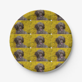 Sweet Tiny Brown Poodle 7 Inch Paper Plate