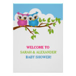 Sweet Twins Owls Boy Girl Baby Shower Poster