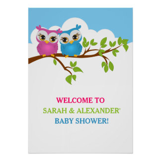 Sweet Twins Owls Boy Girl Baby Shower Poster Print
