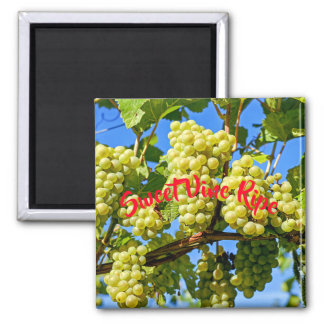 Sweet Vine Ripe Green Grape Fruit Magnet