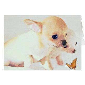 Sweet wee puppies card