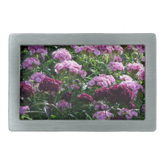 Sweet William blooms Rectangular Belt Buckle