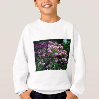 Sweet William blooms Sweatshirt