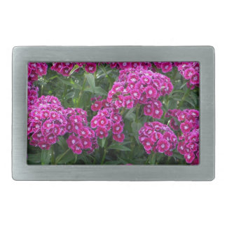 Sweet William in Bold Bloom Rectangular Belt Buckles