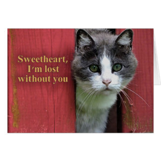 Sweetheart I'm Lost Without You, Cute Cat Card