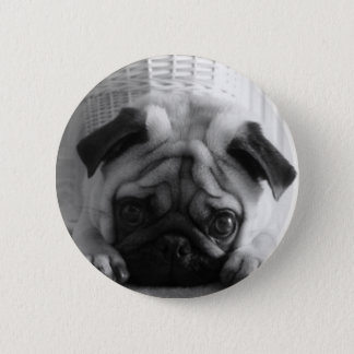 SweetPea Pugs 2 Inch Round Button