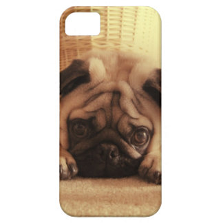 SweetPea Pugs iPhone 5 Cases
