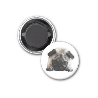 SweetPea Pugs Round Fridge Magnet