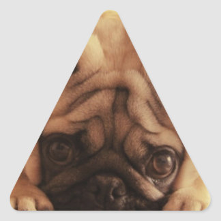 SweetPea Pugs Triangle Sticker