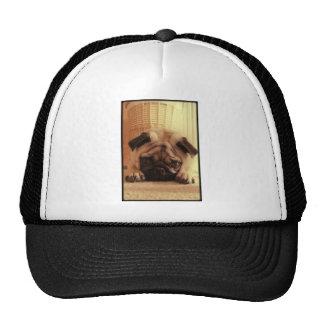 SweetPea Pugs Trucker Hat