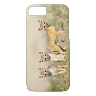 Swift Fox (Vulpes macrotis) young at den burrow, 3 iPhone 7 Case