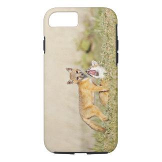 Swift Fox (Vulpes macrotis) young at den burrow, 4 iPhone 7 Case