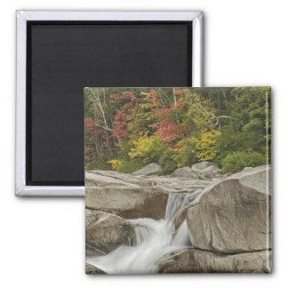 Swift River cascading through rocks, White Square Magnet