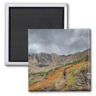 Swiftcurrent Pass - Glacier National Park Magnet