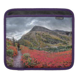 Swiftcurrent Pass Trail - Glacier National Park iPad Sleeve
