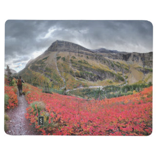 Swiftcurrent Pass Trail - Glacier National Park Journal