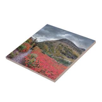 Swiftcurrent Pass Trail - Glacier National Park Tile