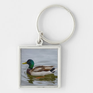 Swim Mallard Swim Silver-Colored Square Keychain