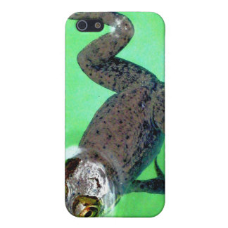 Swimmin' Frog IPhone 4 Case