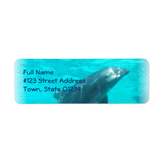 Swimming Dolphin Return Address Label