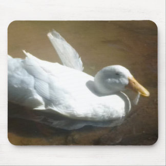 Swimming Duck Mouse Pad