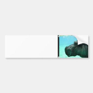 Swimming Hippo Bumper Sticker