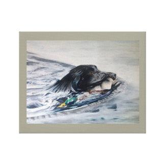 swimming Labrador retrieving duck Canvas Print