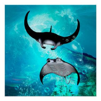 Swimming manta  rays poster