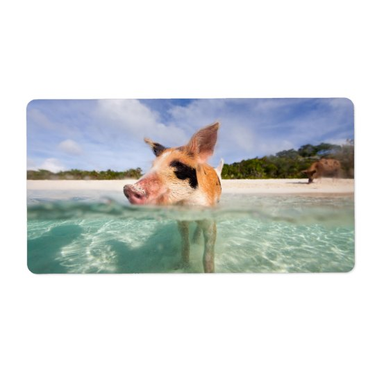 Swimming pig of Exuma Shipping Label