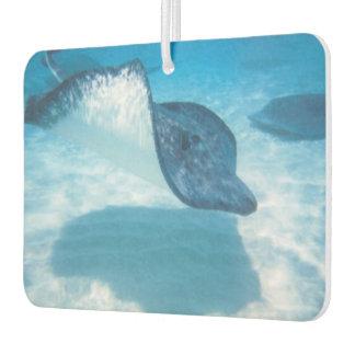 Swimming Pretty Stingray Air Freshener