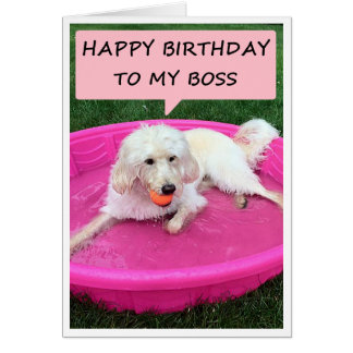 SWIMMING PUP LOVES WORKING FOR BOSS=BIRTHDAY GREETING CARD