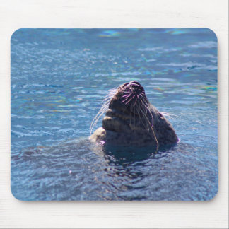 Swimming Sea Lion Mouse Pad